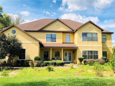 Yalaha Single Family Home For Sale: 27409 Hammock View Court