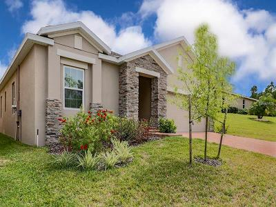 Leesburg Single Family Home For Sale: 26006 Meadow Breeze Lane