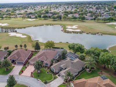 Lake County, Marion County Single Family Home For Sale: 17116 SE 79th McLawren Terrace