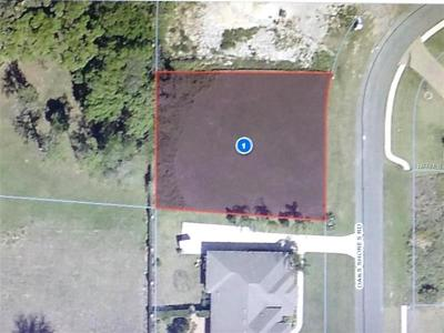 Leesburg Residential Lots & Land For Sale: 715 Oaks Shores Road