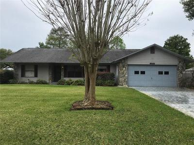 Leesburg Single Family Home For Sale: 12400 S Putney Court