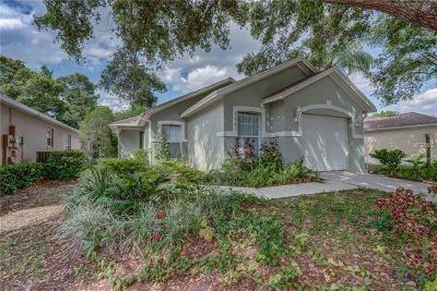 Mount Dora Single Family Home For Sale: 3009 Andover Court