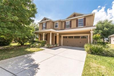 Mount Dora Single Family Home For Sale: 30339 Tokara Terrace