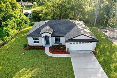 Volusia County Single Family Home For Sale: 879 Saxon Boulevard