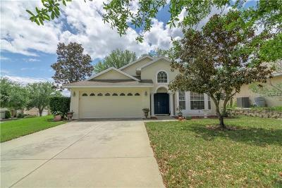 Leesburg Single Family Home For Sale: 33323 Irongate Drive