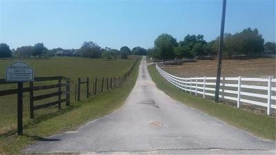 Clermont Residential Lots & Land For Sale: 21120 County Road 455