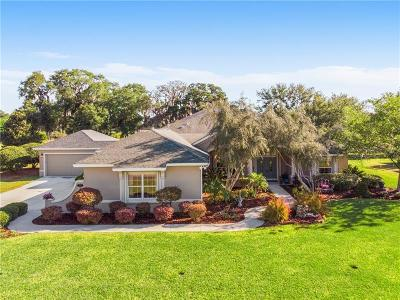 The Villages Single Family Home For Sale: 648 Ternberry Forest Drive