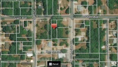 Mount Dora Residential Lots & Land For Sale: Grant Avenue
