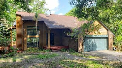 Mount Dora Single Family Home For Sale: 401 Groveland Road
