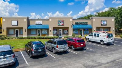 Commercial For Sale: 556 S Highway 27