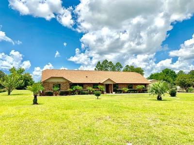 Eustis Single Family Home For Sale: 36733 Forestdel Drive