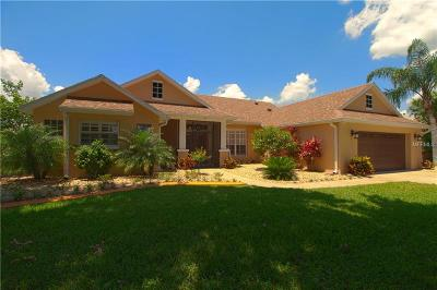 Clermont Single Family Home For Sale: 11605 Grand Bay Boulevard