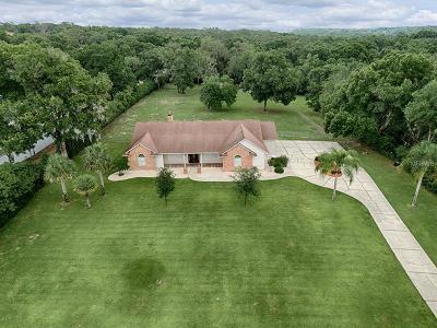 Mount Dora FL Single Family Home For Sale: $550,000