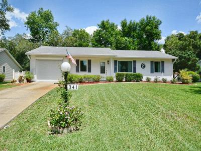 Leesburg Single Family Home For Sale: 341 River Glass Court