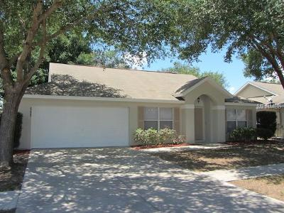 Tavares Single Family Home For Sale: 3808 Meadow Green Drive