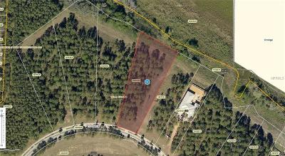 Montverde Residential Lots & Land For Sale: 17013 Lucca Lane