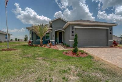 Howey In The Hills Single Family Home For Sale: 463 Bellissimo Place