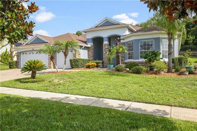 Mount Dora Single Family Home For Sale: 6156 Tremayne Drive #1