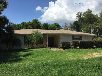 Mount Dora Single Family Home For Sale: 1001 W 11th Avenue