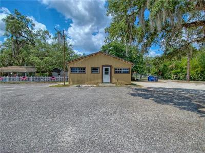 Hernando County Commercial For Sale: 29250 Lake Lindsey Road