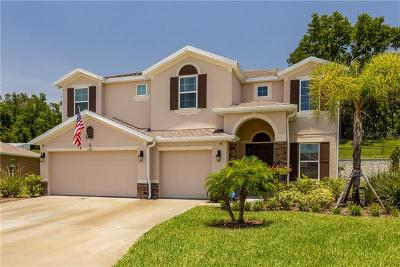 Apopka Single Family Home For Sale: 1509 Spinfisher Drive