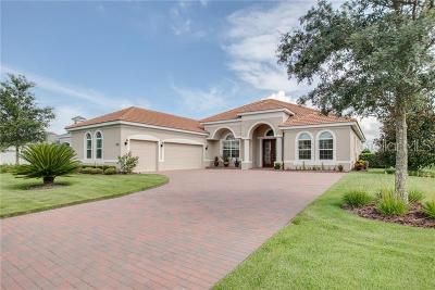 Mount Dora Single Family Home For Sale: 3031 Isola Bella Boulevard