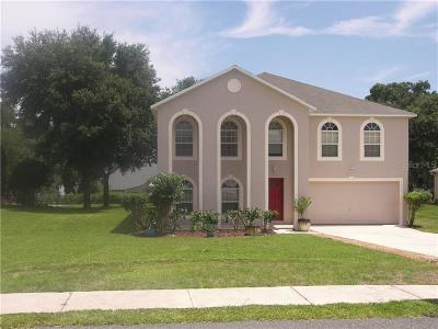 Fruitland Park Single Family Home For Sale: 1113 Myrtle Lake View Drive