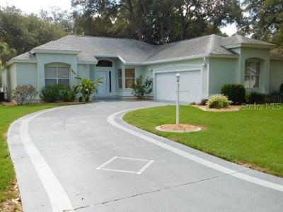 The Villages Single Family Home For Sale: 215 Del Rio Drive