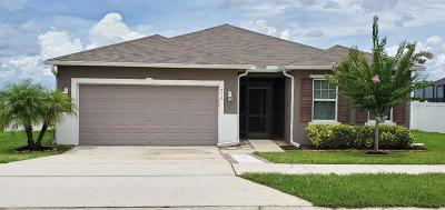Groveland Single Family Home For Sale: 713 Black Eagle Drive
