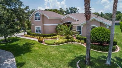 Mount Dora Single Family Home For Sale: 1023 Juliette Boulevard