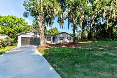 Mount Dora Single Family Home For Sale: 1149 Orange Avenue