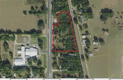 Commercial For Sale: 12181 N Us 301