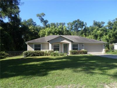 Deland  Single Family Home For Sale: 1820 Trinidad Street