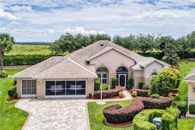 Tavares Single Family Home For Sale: 2840 Mediterranean Loop