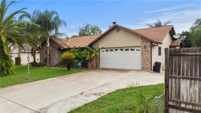 Ocala Single Family Home For Sale: 13 Hemlock Court Pass