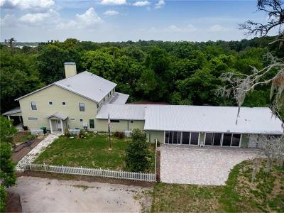 Mount Dora Single Family Home For Sale: 7241 Lake Ola Drive