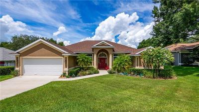 Minneola Single Family Home For Sale: 455 Waterwood Court