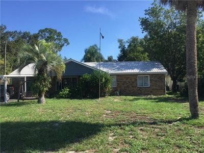 Leesburg Single Family Home For Sale: 12065 Virginia Drive