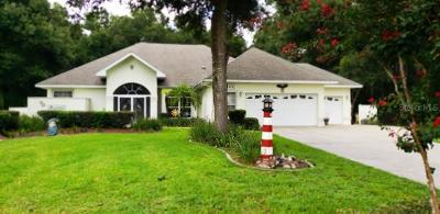 Fruitland Park Single Family Home For Sale: 36320 Piney Ridge Boulevard