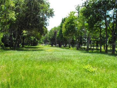 Residential Lots & Land For Sale: S Us Hwy 27 & Howard Rd