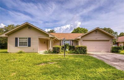 Beverly Hills, Citrus Hills, Citrus Springs, Crystal River, Dunnellon, Floral City, Hernando, Homassa, Homosassa, Inverness, Lecanto, Port Charlotte Single Family Home For Sale: 2450 N Brentwood Circle
