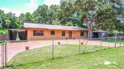 Lady Lake Single Family Home For Sale: 39825 Magnolia Street