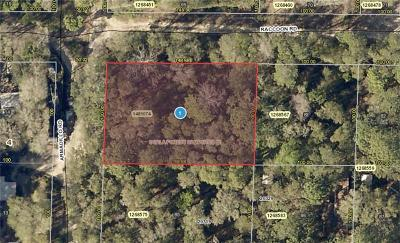 Residential Lots & Land For Sale: Raccoon Road