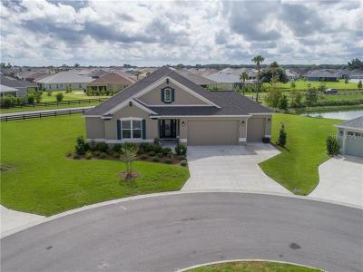 The Villages Single Family Home For Sale: 2638 Tenney Lane