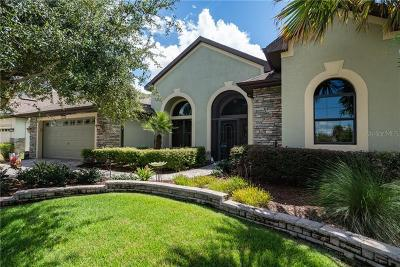 Mount Dora Single Family Home For Sale: 8832 Bridgeport Bay Circle Circle