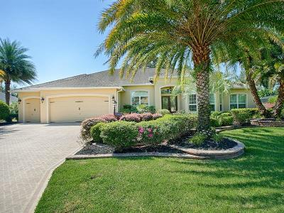 The Villages Single Family Home For Sale: 2204 Baypoint Way