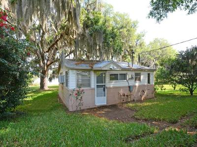 Tavares Single Family Home For Sale: 1319 Osceola Avenue