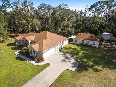 Summerfield Single Family Home For Sale: 17261 SE 101st Avenue Road