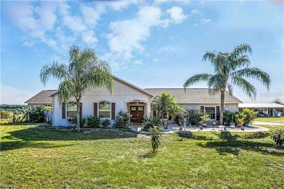 Howey In The Hills Single Family Home For Sale: 23242 Citrus Valley Road