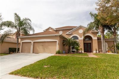 Clermont Single Family Home For Sale: 3304 Tumbling River Drive